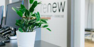 Renew Physiotherapy Edmonton | meadowlark physiotherapy